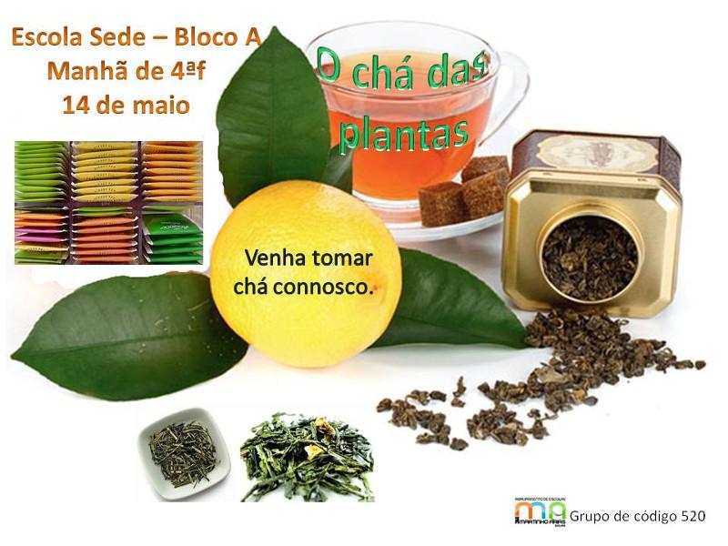 Divulgação - Chá das plantas